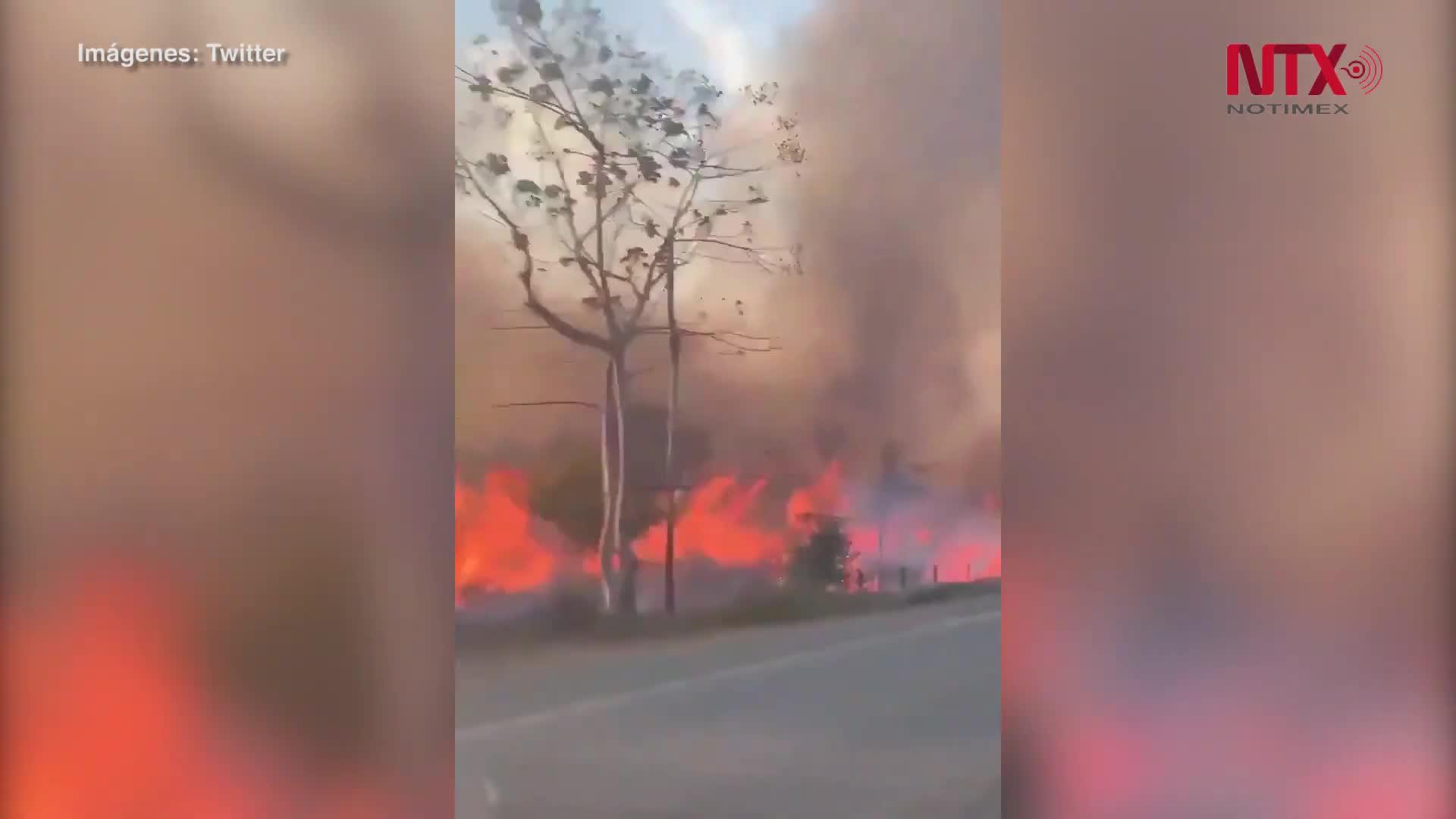 Los incendios de la Amazonia peligra el clima mundial