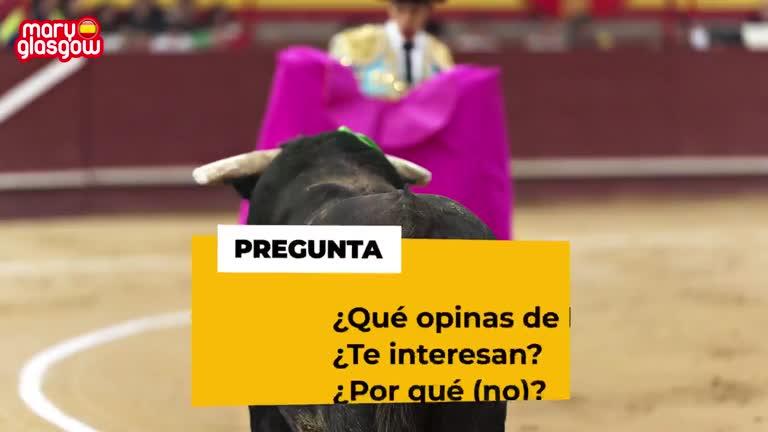 Hablamos sobre los toros