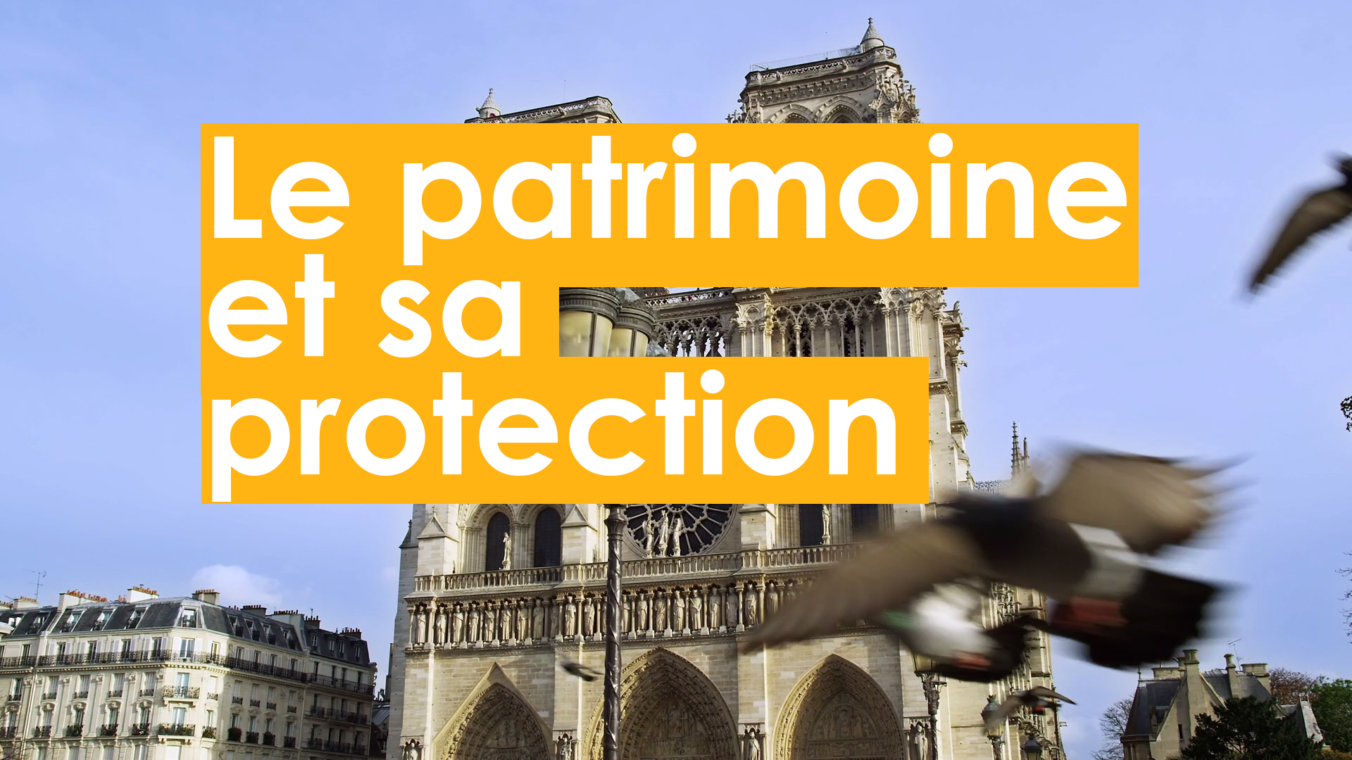 Le patrimoine et sa protection