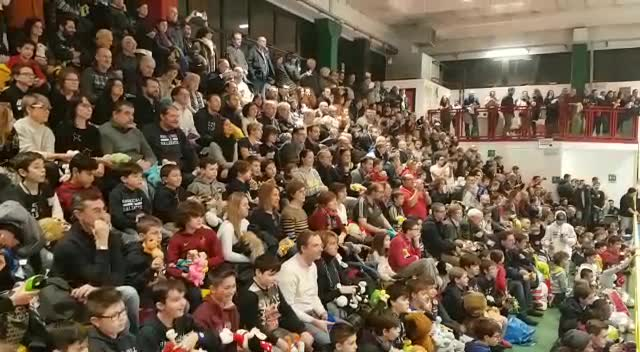 Video: Una pioggia di peluche sul campo da basket: il Teddy Bear Toss a Gallarate
