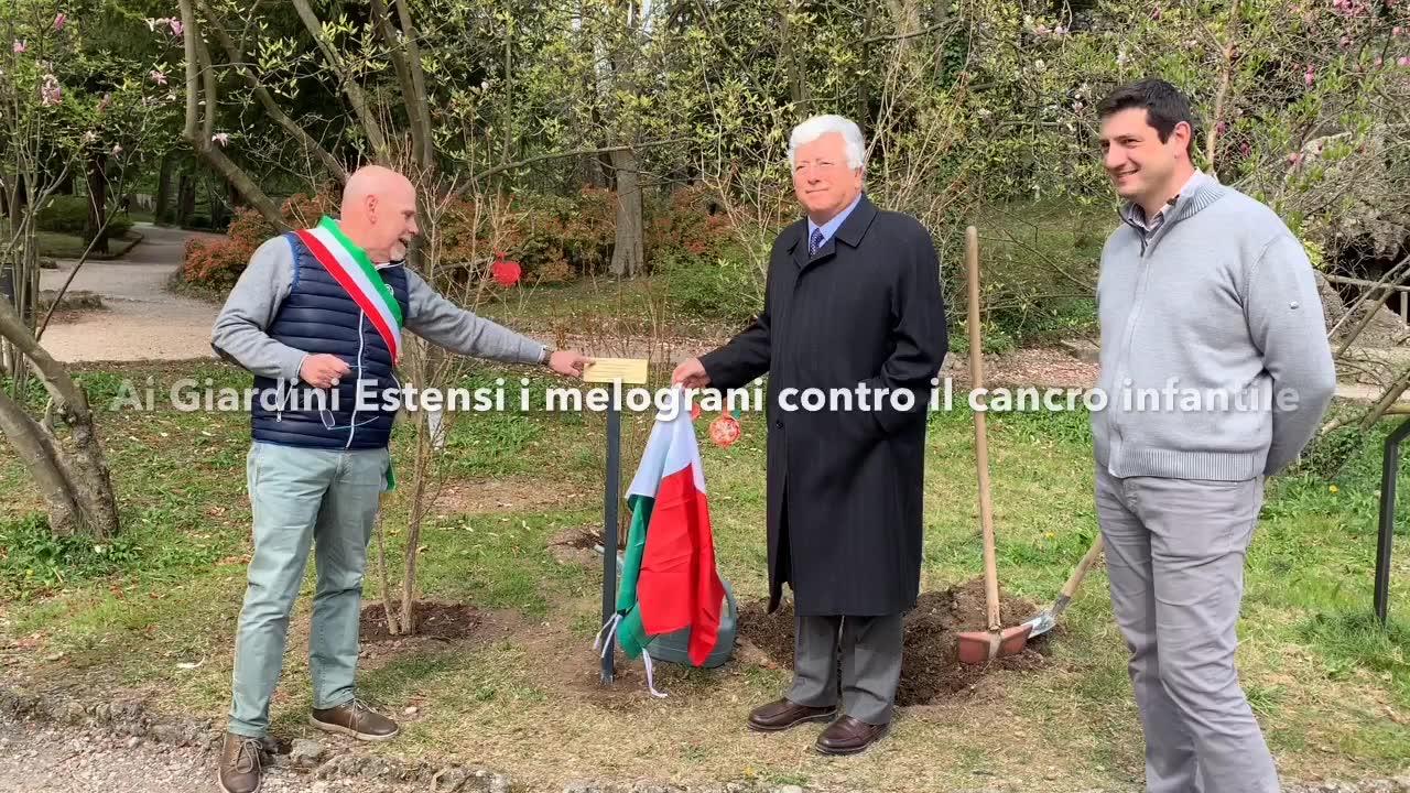 Video: Melograni ai giardini estensi con la Fondazione Ascoli