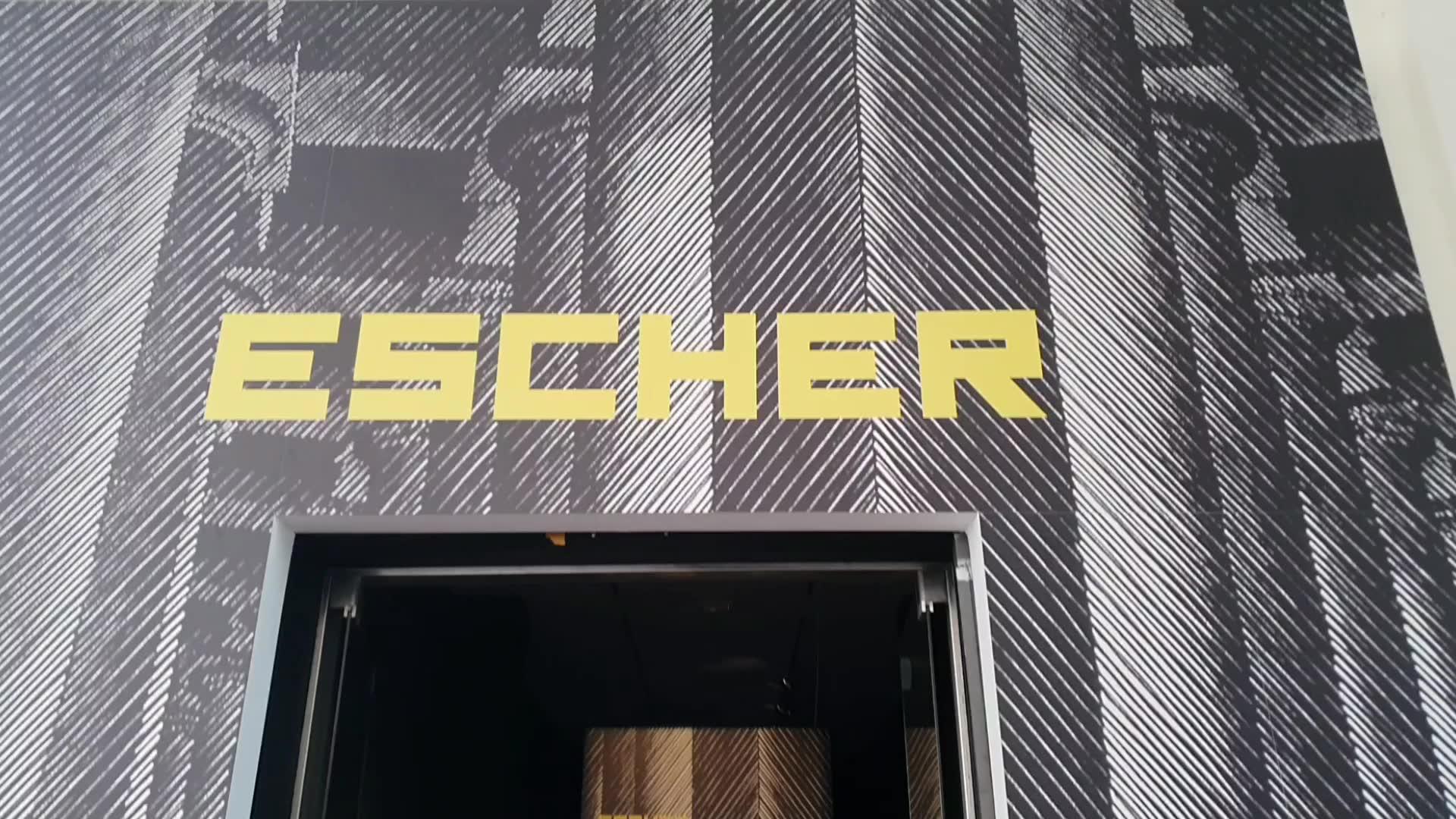 A palazzo Ducale apre la mostra di Escher, l'arte del surreale