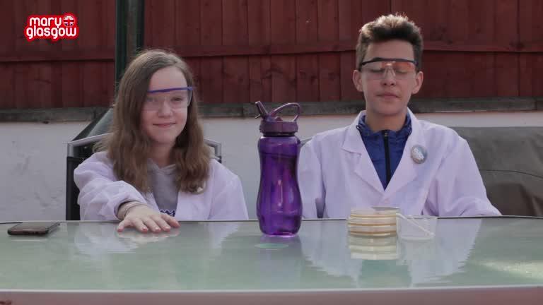 CLICK LAB: A Bacteria Experiment screenshot