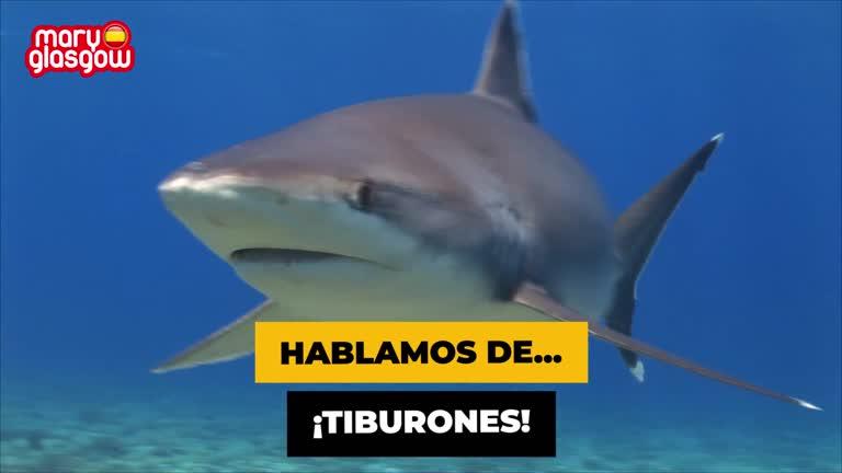 Tiburones screenshot