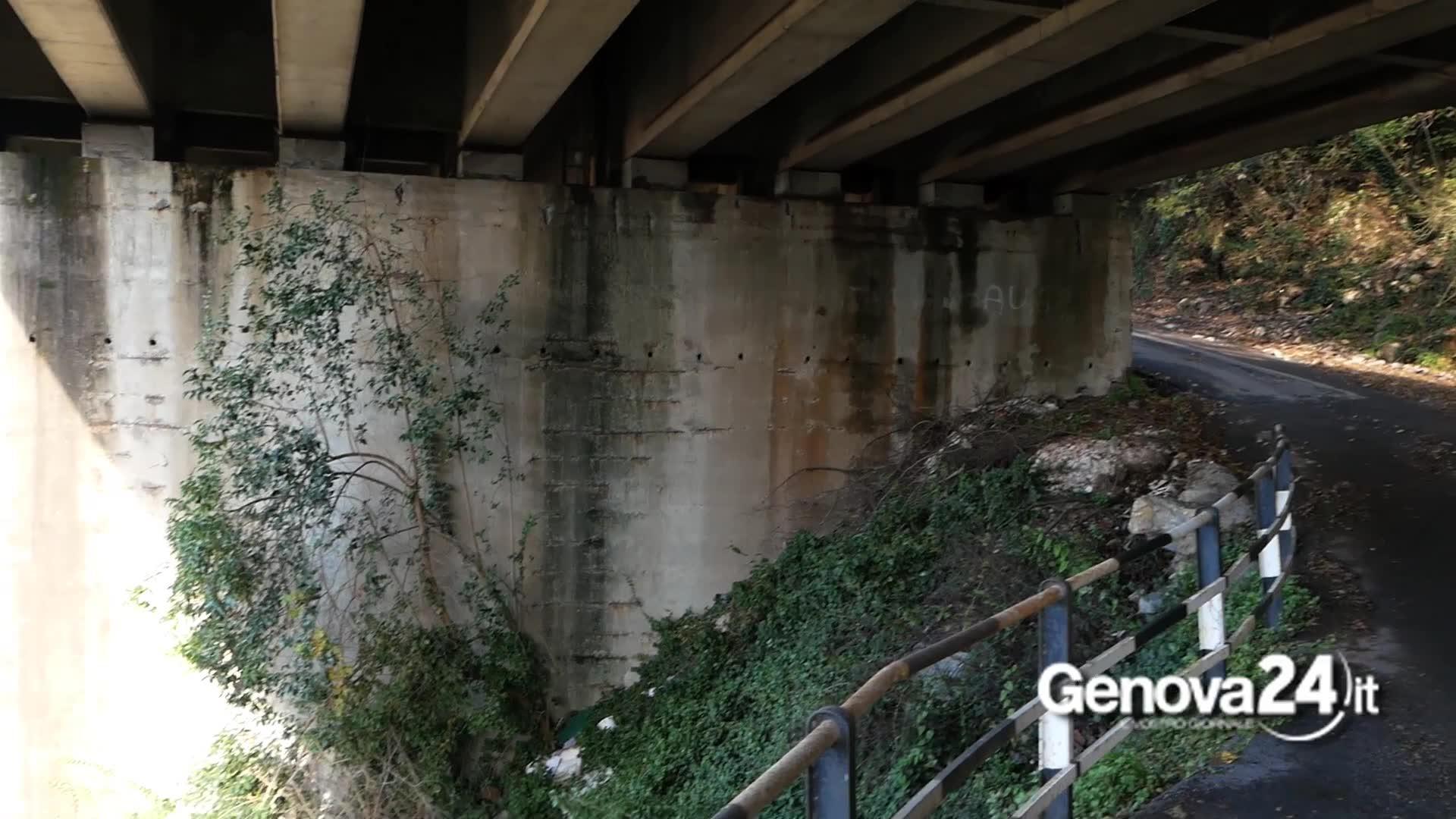 Reportage sotto e dentro il viadotto Recco