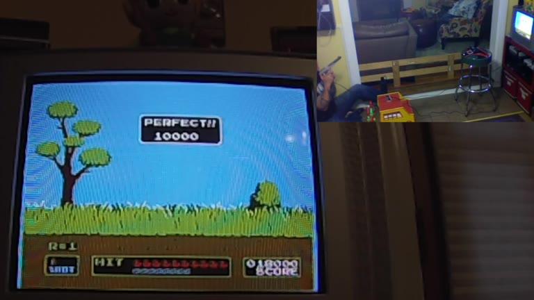 Nintendo Entertainment System - Duck Hunt - NTSC - 2 Ducks (Minimum Distance) - Points - 541,700 - Robert Copley