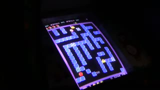 Arcade - Pengo - Points - 1,306,410 - Paul Hornitzky