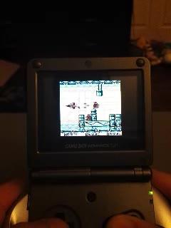 Game Boy / Game Boy Color - Sagaia - Points - 14,770 - Dane Gill