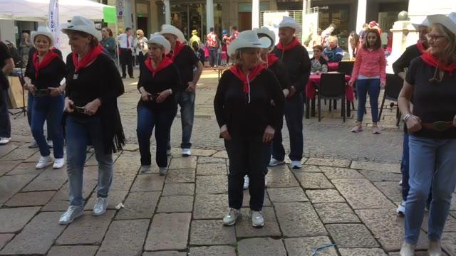 Video: XIV festa della solidarietà