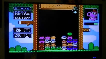 Nintendo Entertainment System - Wario's Woods - NTSC - Fastest Completion [5 Rounds / Easy Mode] - 01:51.0 - Ryan Genno