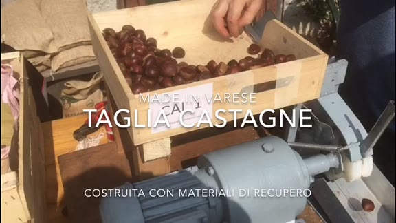 Video: Come tagliare 3200 castagne in un'ora