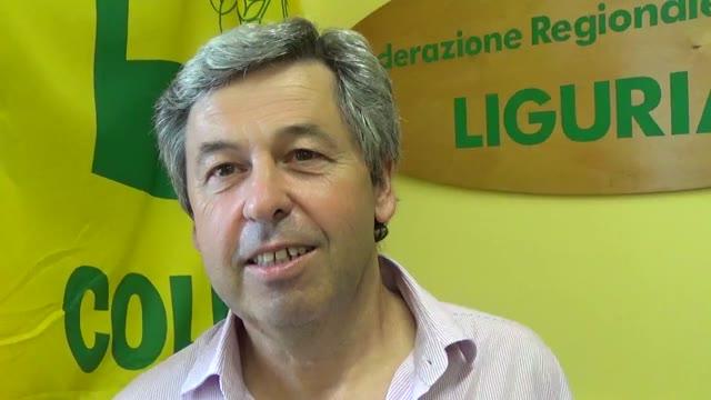 """Video: Coldiretti scrive ai sindaci della Liguria: """"ordinanze contro l'emergenza cinghiali"""""""