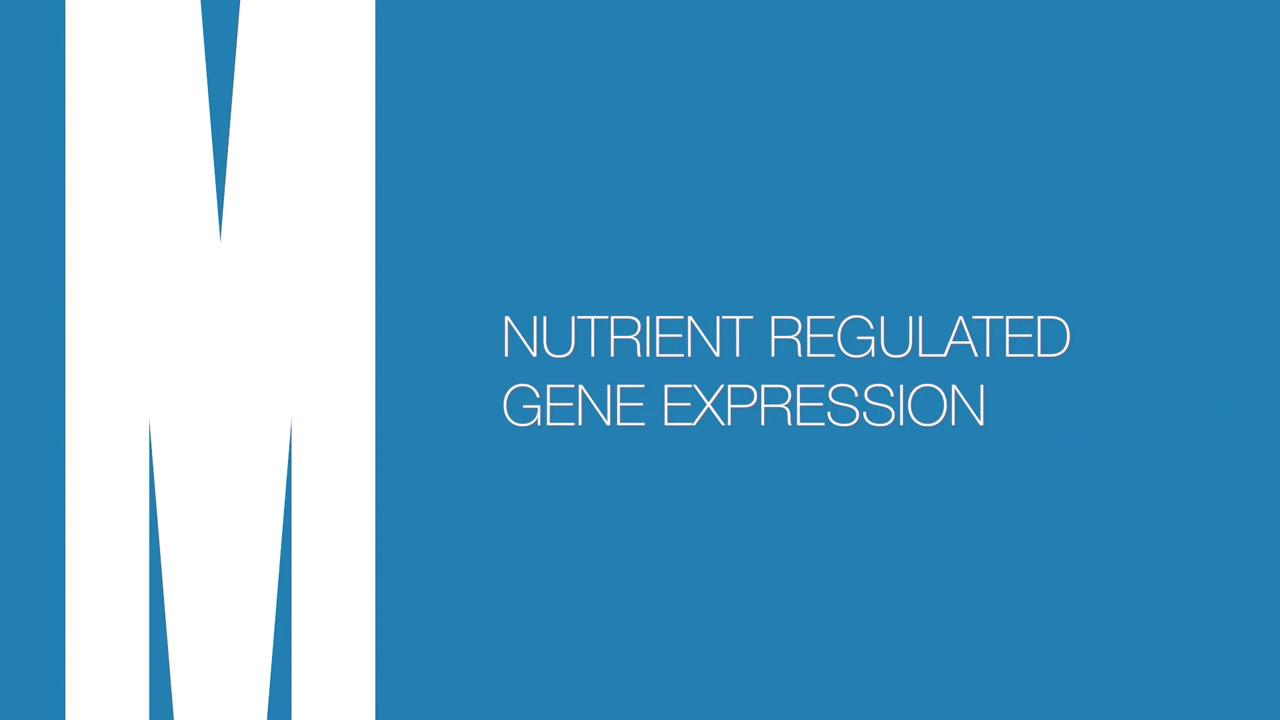 Nutrient regulated gene expression