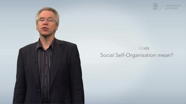 What is social self-organisation?
