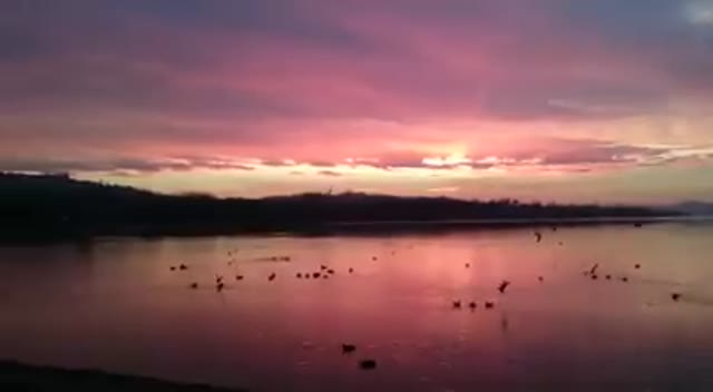 Video: L'alba sul lago